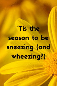 'Tis the season to be sneezing (and wheezing_)